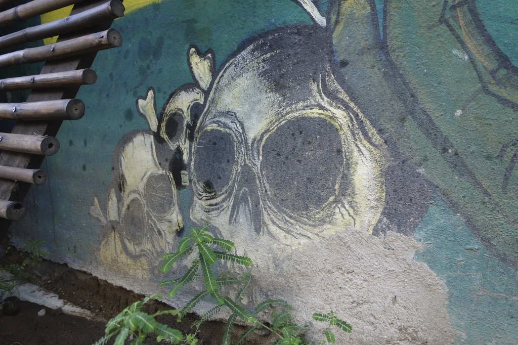 Excellent street art throughout the small town of Zipolite