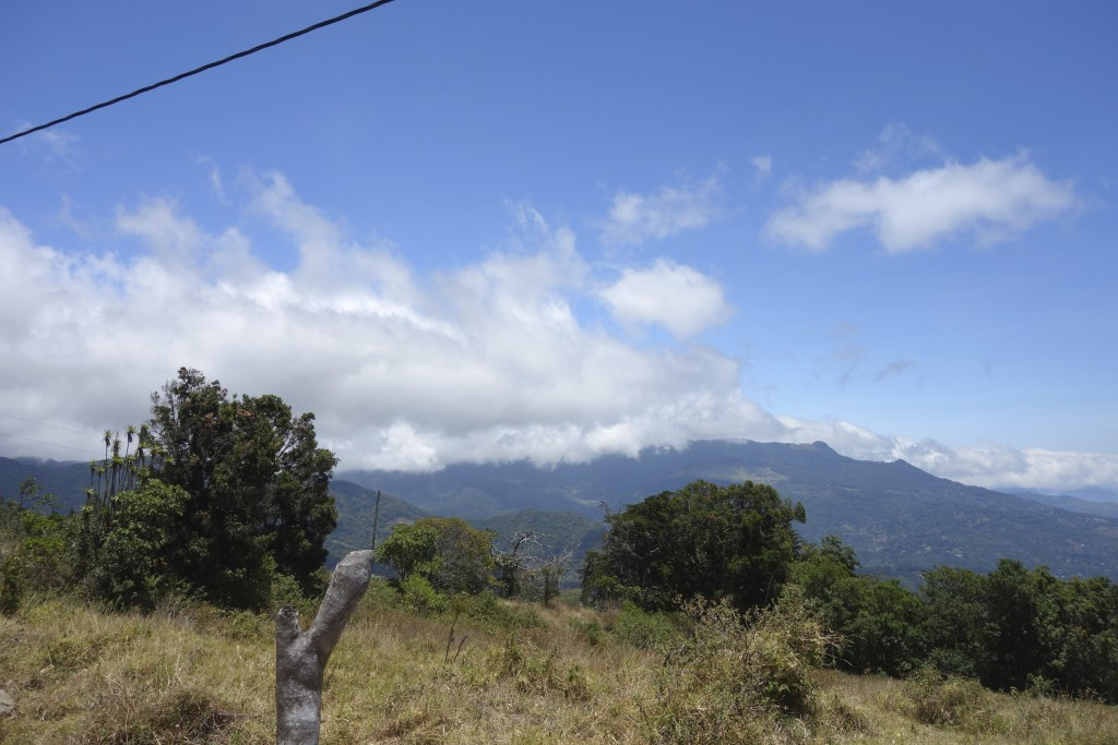 Coffee country in Panama near Boquete.