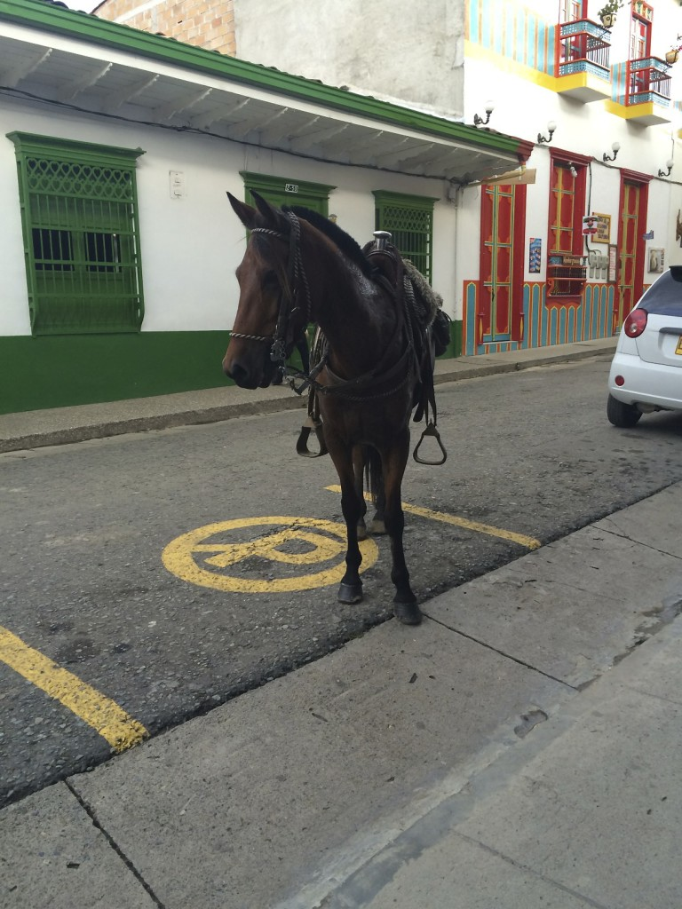 This horse is illegally parked while its owner is in the bakery buying bread.