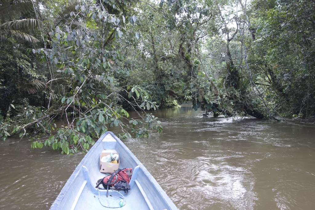 Two hours by boat navigating narrow channels through the jungle was required to get to our lodge.