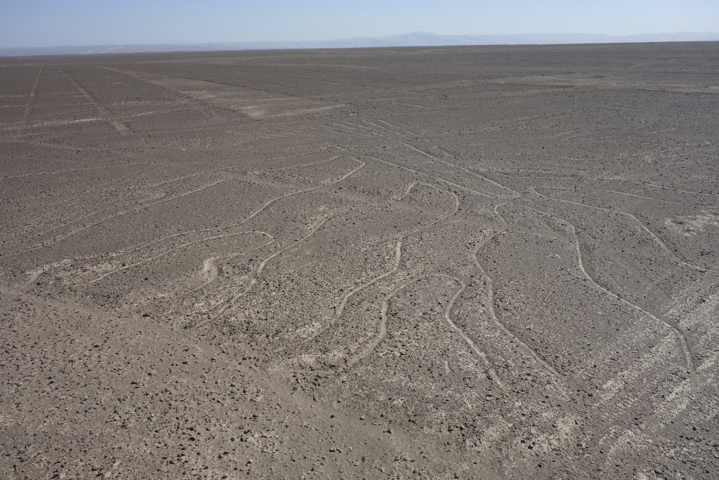 Some of the Nasca lines you can see from a platform next to the PanAmerican Highway.