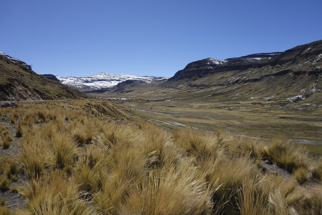 The high Andes are a cold and lonely place but people make a subsistence living grazing animals and growing limited crops that can survive the harsh climate at this altitude.