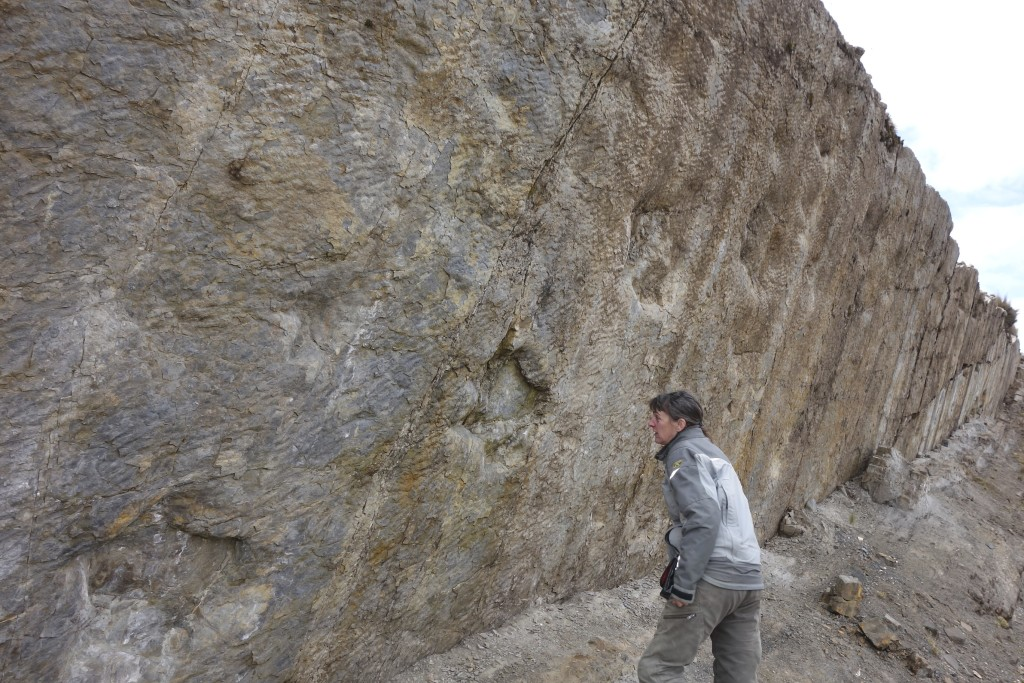 Shannon gets a closer look at at a mark left by a dinosaur. The wonders of this world abound and the more of it we see the more our curiosity grows. Central highlands, Peru.