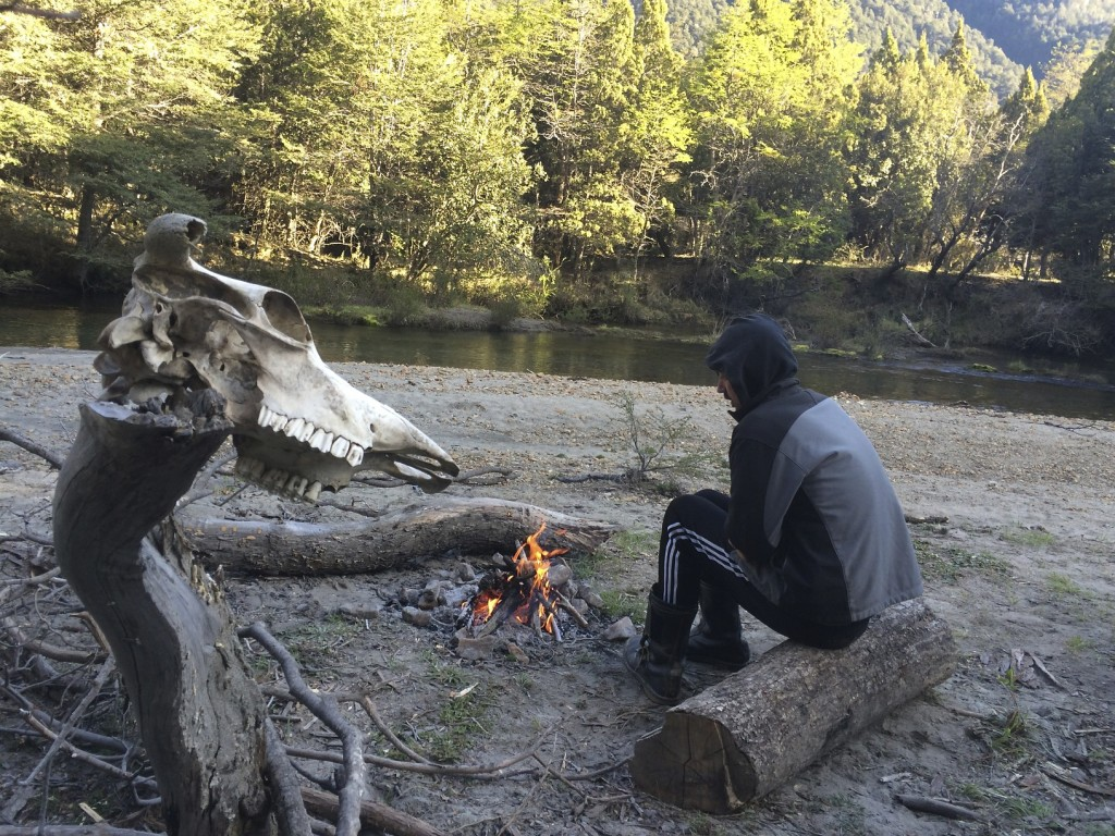 Some of the best camping doesn't cost a dime. We found this secluded spot at the end of an unmarked dirt track. We set the tent on a sandy beach at a bend in a cold and clear creek. The only sign of other visitors was the cow skull hanging off of a stump. Lago Traful, Patagonia, Argentina.