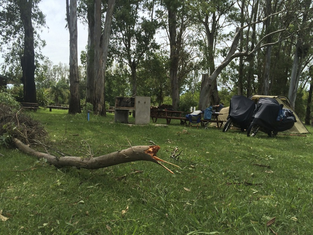 The storm raged all night. Seeing what came down around our camp was a little unnerving. San Nicanor, Uruguay.