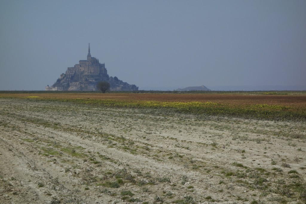Mont Saint-Michel is one of France's most recognizable landmarks. The monastery and strategic fortification becomes an island at high tide. Normandy, France.