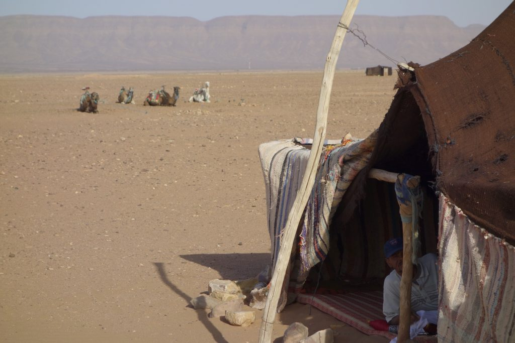 Our Tuareg camel guide keeping comfortable in the Sahara sun.