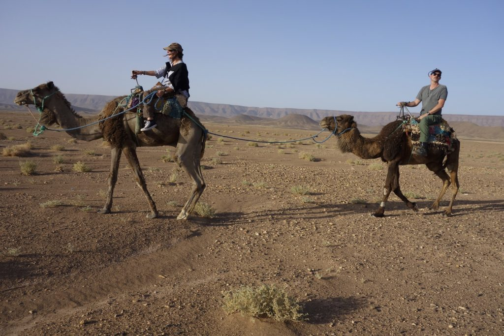 Riding camels is fun but not very comfortable. There are no stirrips and having your legs just dangling in the breeze takes a toll. After a two hour sunset ride I am good for another 48 years before riding a camel again. It was really a special trip as it was just the two of us and our guide. We are very glad we did it.